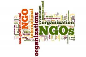 Role of Non-Government Organizations (NGOs),